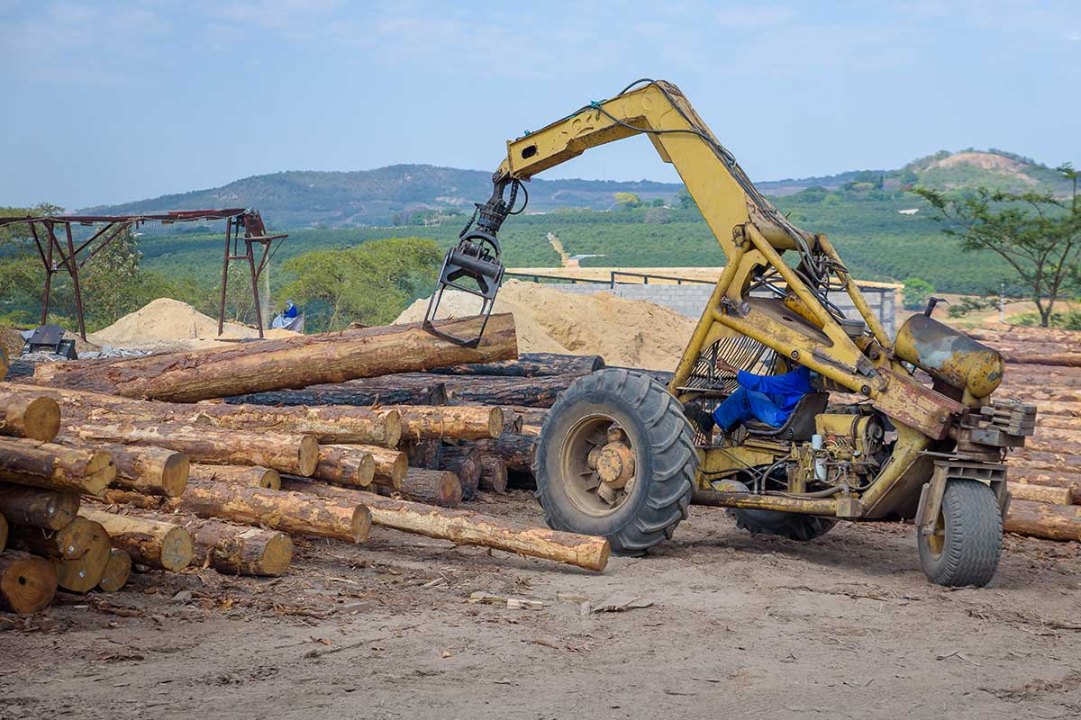 Capio Lumber Timber Supplies