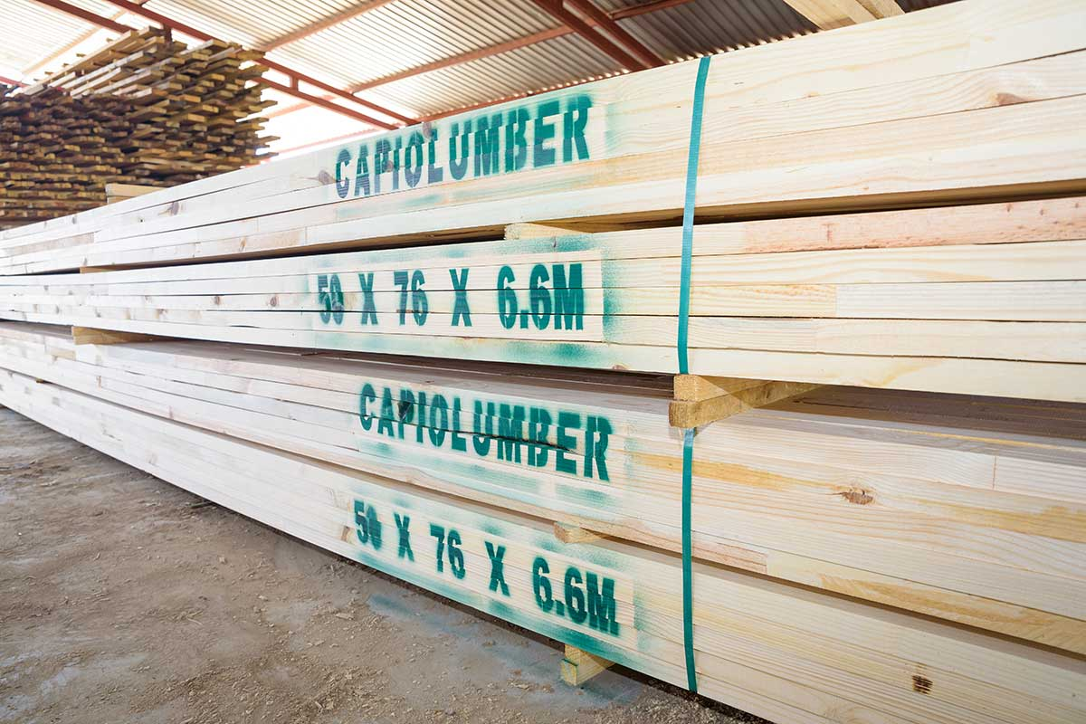 Capio Lumber Timber Profiles